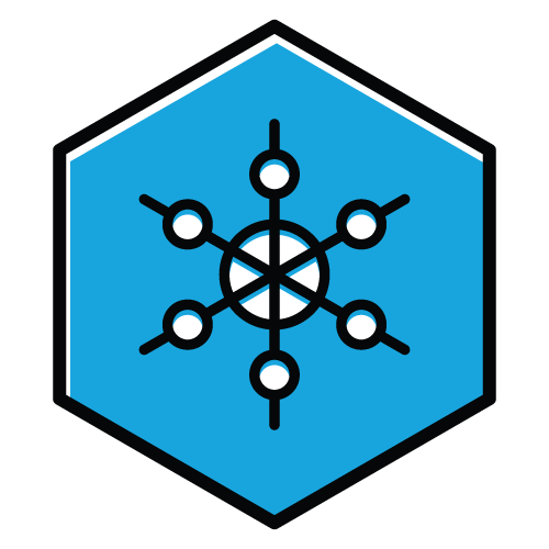 Plunge_2019_Web_Incentives_Levels_1_Snowflake